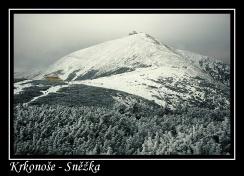 magnetka foto : Milan Kment 020308320158