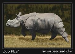magnetka foto : archiv Zoologické zahrady 0000042102476