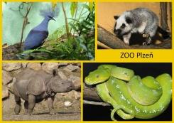 pohled A5 foto : archiv Zoologické zahrady Orient