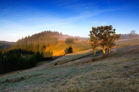 Ráno v Krušných horách