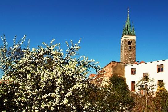 Jarní pohled na věž kostela sv Ducha