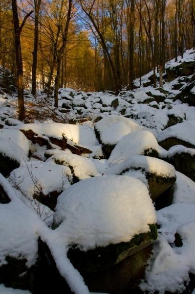 Vlčí rokle zimní