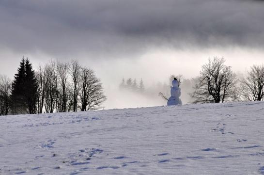 Sněhulák - Krušné hory