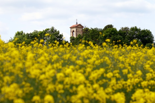 Kostel svatého Václava - ruiny