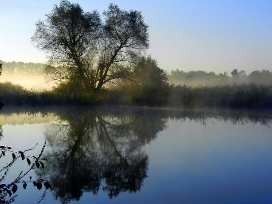 Svítání u řeky