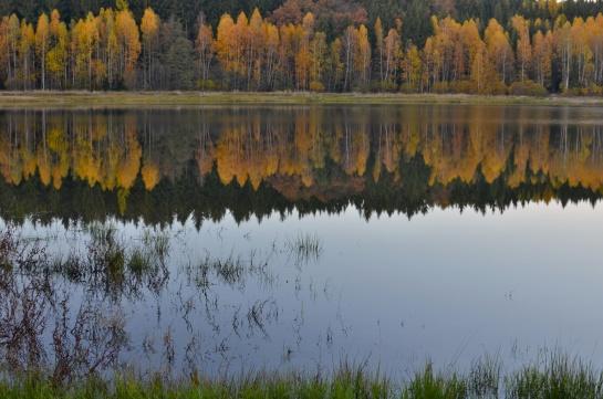 podzimní jezero v Brdech , Octárna