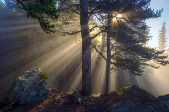Východ slunce na Sedle