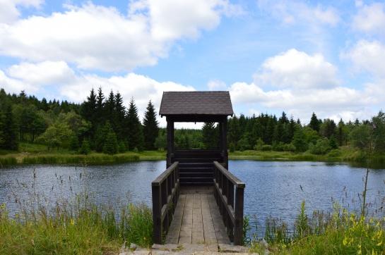 Černý rybník nad Mezihořím