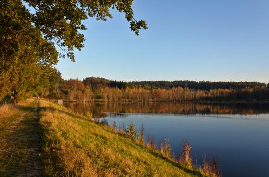 Vokačovský rybník u Bohutína
