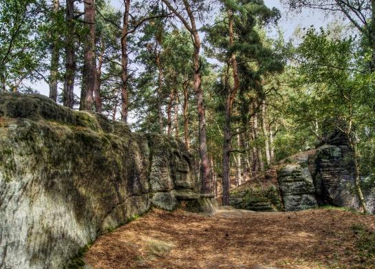 Dutý kámen u Cvikova