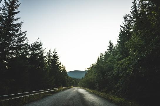 Cesta na Dlouhé Stráně