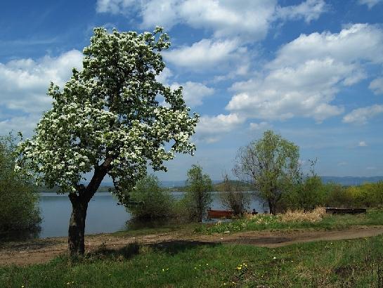 Jaro na Nechranici
